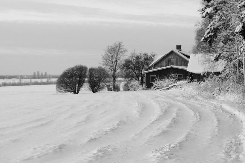 sw-foto: Ein Haus und einige Bäume in verschneiter Landschaft
