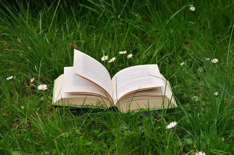 Ein aufgeschlagenes Buch liegt auf einer grünen Wiese