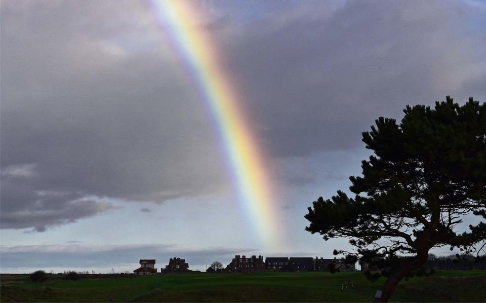Ein Regenbogen endet am Horizont hinter Häusern, rechts im Vordergrund ein Baum